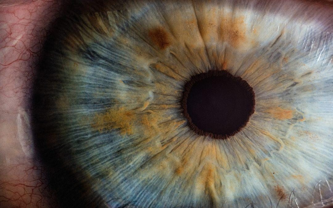 Maculaser raised €1.2 million in funding to combat blindness